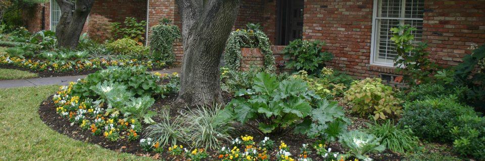 Shady Area Gardens For Texas